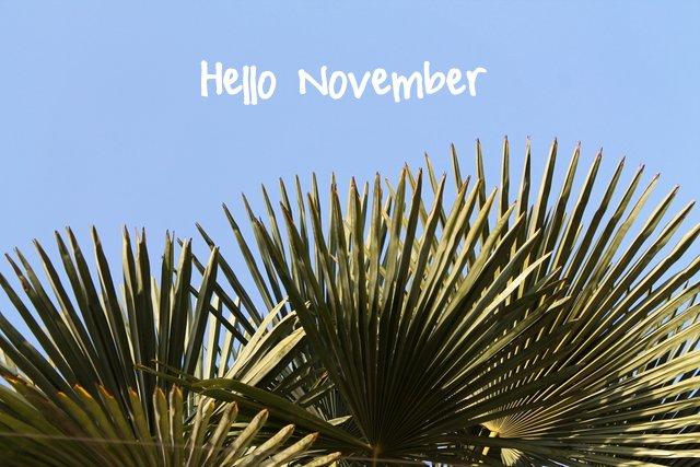 November goals | www.OrganisingQueen.com