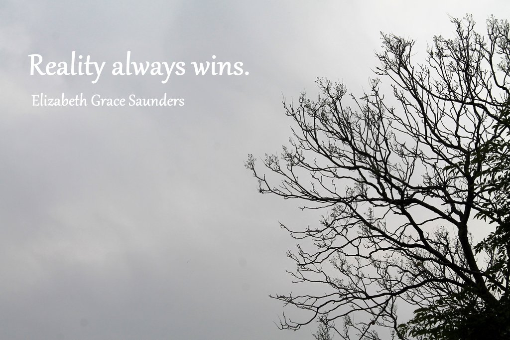 Reality always wins | www.OrganisingQueen.com